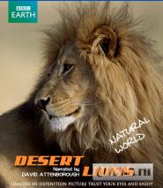 BBC. Планета Земля: Львы пустыни / Planet Earth - Natural World: Desert Lions